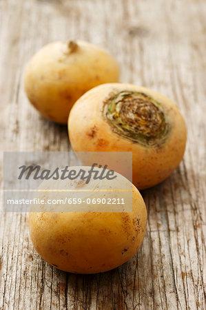 Fall turnips