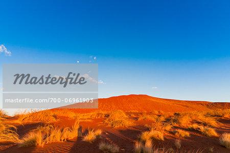 Red Dune and moon in blue sky, Sossusvlei, Namib Desert, Namib Naukluft Park, Namibia, Africa