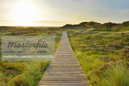 Wooden Walkway through Dunes with Sun, Summer, Norddorf, Amrum, Schleswig-Holstein, Germany