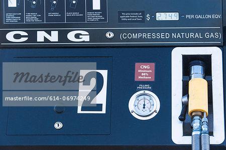 Natural gas pump