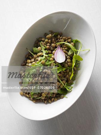 Lentil salad with rocket