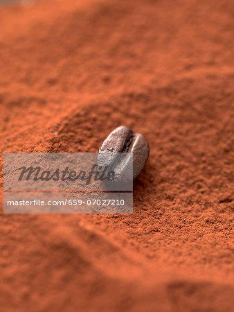 A mocha bean in cocoa powder (close-up)