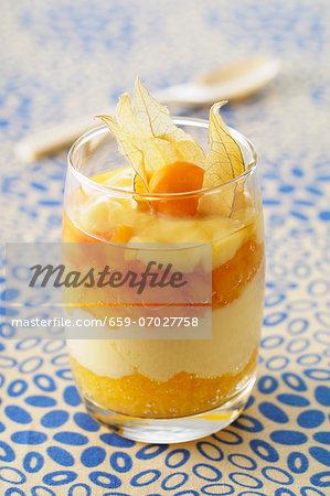 A layered dessert of apricots and caramel custard