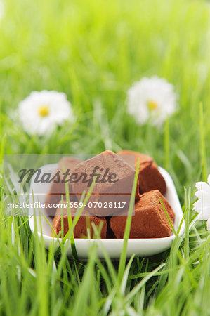 Chocolate truffles in artificial grass