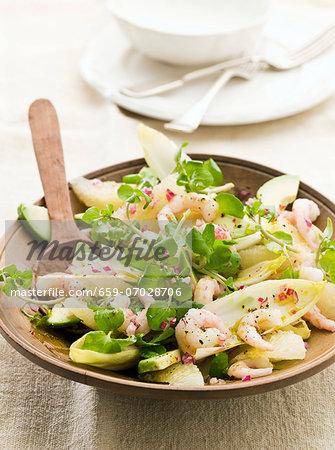 Chicory salad with grapefruit, prawns and avocado