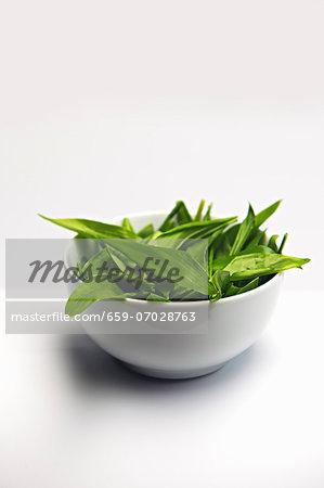 Wild garlic in a white dish