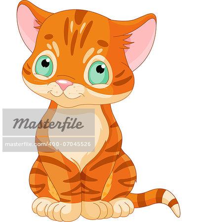 Sitting red tabby kitten