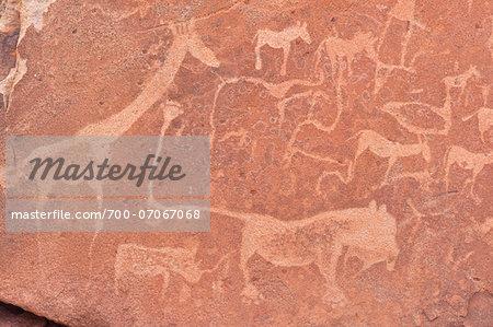 Close-up of Petroglyphs (or rock engravings), Twyfelfontein, UNESCO World Heritage site, Damaraland, Kunene Region, Namibia, Africa
