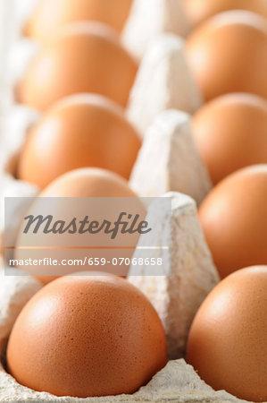 Brown hen's eggs in an eggbox (close-up)