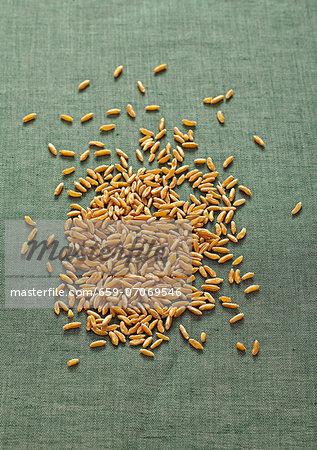 Kamut grain against a green linen background