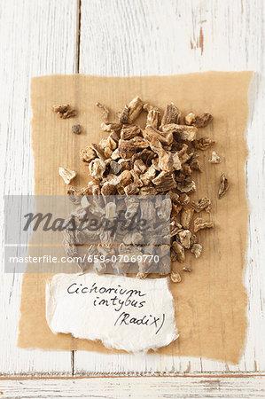 Dried chicory root (Cichorium intybus)