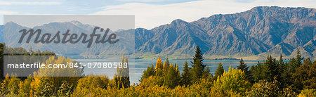 Autumn trees at Lake Hawea, West Coast, South Island, New Zealand, Pacific