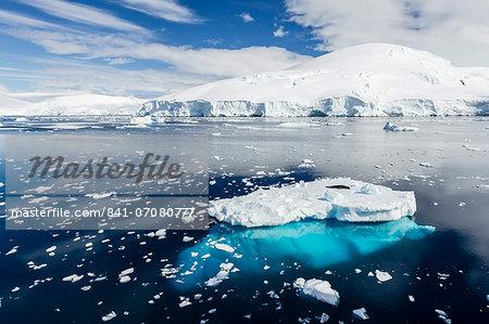Adult leopard seal (Hydrurga leptonyx), Snow Island, South Shetland Islands, Antarctica, Southern Ocean, Polar Regions