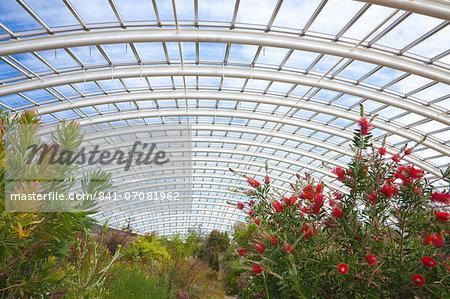National Botanic Garden of Wales, Llanarthne, Carmarthenshire, Wales, United Kingdom, Europe