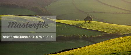 Rolling countryside near Oare, Exmoor National Park, Somerset, England, United Kingdom, Europe