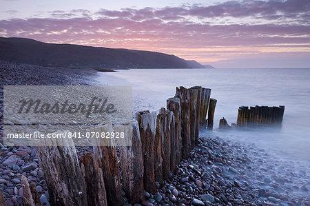 Wooden groyne on Bossington Beach, Exmoor, Somerset, England, United Kingdom, Europe