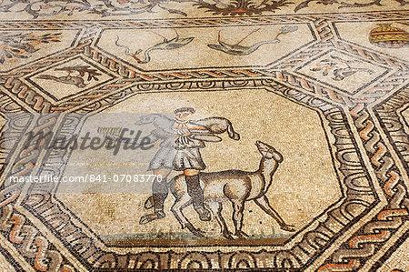Early Christian mosaic floor dating from the 4th century, the Basilica of Santa Maria Assunta, Aquileia, Friuli-Venezia Giulia, Italy, Europe