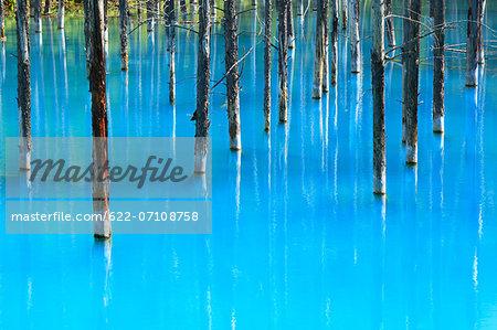 Blue pond, Hokkaido