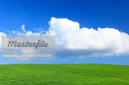 Wheat field and clouds, Hokkaido