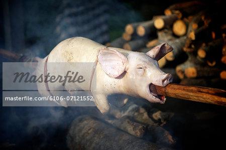Balinese suckling pig