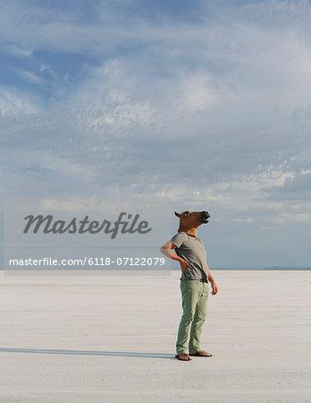 A Man Wearing A Horse Mask, Standing On The Bonneville Salt Flats.