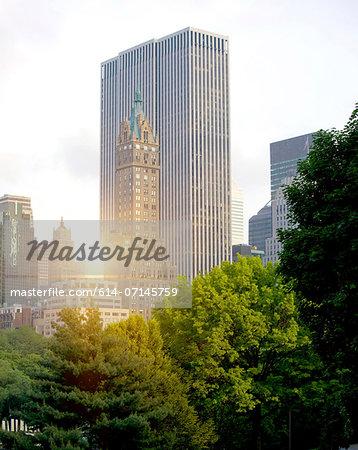 New York skyline from central park, New York City, USA