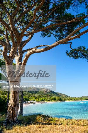 Coastal beach scene and ocean, Porto Vecchio, Palombaggia Beach, Palombaggia Nature Reserve, Corsica, France