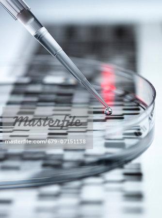 Genetic research.