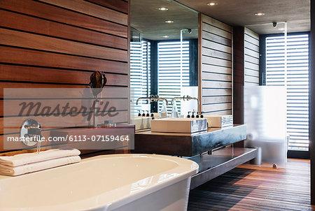 Bathtub and sinks in modern bathroom