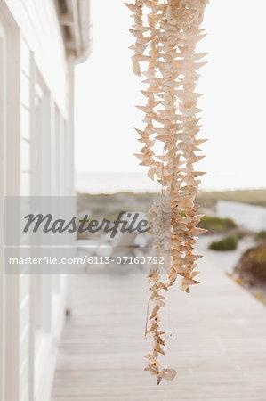 Strand of shells hanging on patio
