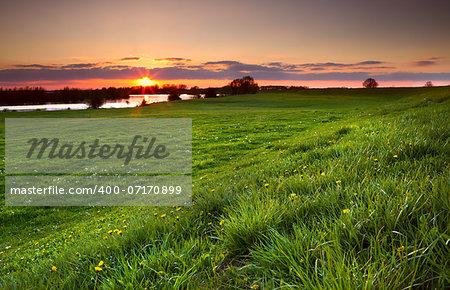dramatic sunset over flowering meadow by river, Gelderlands, Netherlands