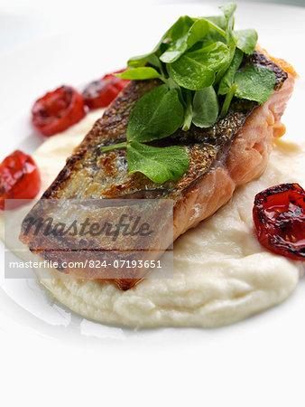 Salmon and celariac puree