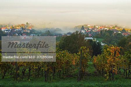 Vineyard Landscape and Brombach Village, Ortenau, Baden Wine Route, Baden-Wurttemberg, Germany