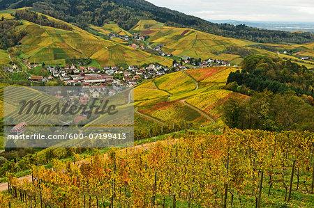 Vineyard Landscape and Durbach Village, Ortenau, Baden Wine Route, Baden-Wurttemberg, Germany