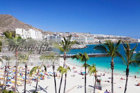 Palm trees at the beach, Arguineguin, Anfi del Mar, Playa de la Verga, Gran Canaria, Canary Islands, Spain, Atlantic, Europe