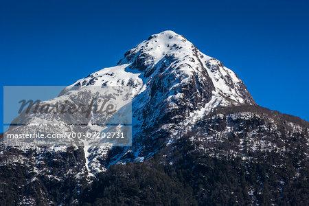 Mount Hope, Parque Nacional Vicente Perez Rosales, Patagonia, Chile