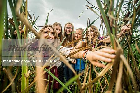 Five young women peering through reeds