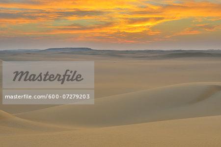 Sand Dunes at Dawn, Matruh Governorate, Libyan Desert, Sahara Desert, Egypt, Africa