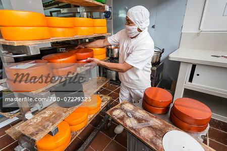 Making Cheese in Cheese Factory at Hacienda Zuleta, Imbabura Province, Ecuador