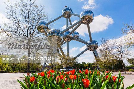 Red Tulips (tulipa) in front of Atomium, Brussels, Belgium