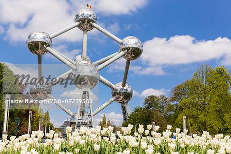 Tulips in front of Atomium, Brussels, Belgium