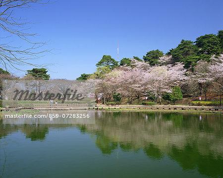 Karasugamori Park, Tochigi, Japan