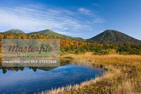 Suiren Pond, Aomori, Japan