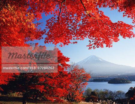 Kawaguchiko And Mt. Fuji, Yamanashi, Japan