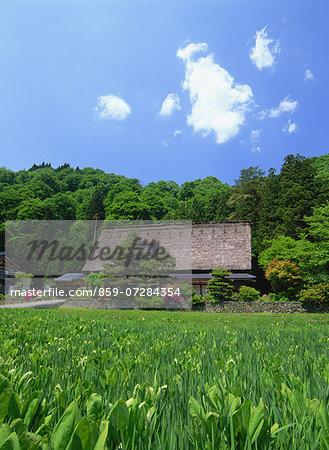 Iwase Family Residence, Toyama, Japan