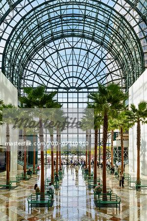 Winter Garden Atrium, World Financial Center, World Trade Center, Lower Manhattan, New York City, New York, USA