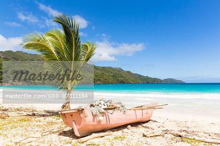 Pink fishing boat by a young palm tree on the beach, Playa Rincon, Samana Peninsula, Dominican Republic, Caribbean
