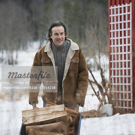An organic farm in winter in New York State, USA. A man wheeling a barrow of firewood.