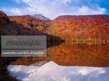Autumn Colours, Tsuta Numa, Aomori Prefecture, Japan