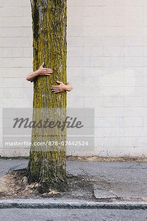 Man hugging a tree on an urban street and sidewalk.